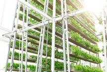 tarım / organik tarım ve hayvancılık
