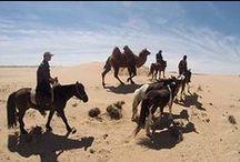 Rando Cheval Mongolie / Nos randos à cheval en Mongolie -  http://www.randocheval.com/Programmes/Pages-Pays/mongolie.html