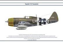 Republic P-47 Thunderbolt      colors