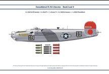 Consolidatet B-24 Liberator   colors