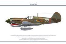Curtiss P-40 Tomahawk   Warhawk  Kittyhawk   colors