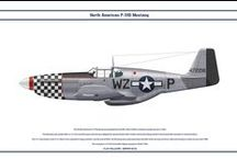 North American P - 51 Mustang  colors