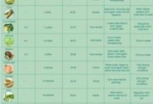 Garden Charts / Vegetable garden charts