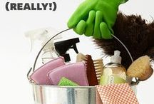 HOME: CLEANING TIPS / Cleaning the home
