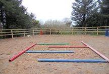 Patterns / by Maryland Therapeutic Riding