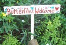 HOME: BUTTERFLY & BEE GARDEN