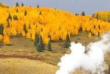 amazing yellow earth / Yellow like Desert or Cliffs