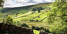 The English Countryside / I feel so fortunate to live in England, it is the most beautiful place to be.