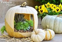 Fall #crafts #deorating & #food / Favorite Fall decorating, crafts, recipes, printables, decor and more from around the web. From pumpkin desserts and  apple pie to fall porches and other beautiful ways to celebrate fall.