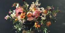 Arrangement / Wedding Centerpieces