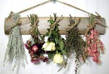 Dried Flowers / Pretty flowers can be forever...