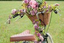 Pretty petals with pretty pedals-flowers and bikes