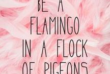 Pink Quotes To Match Your Website