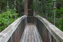 Bridges Aesthetic