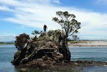 #Aotearoa H.S.H* ❇⭐ / New Zealand :Home