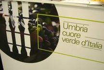 WTE - Salone Mondiale del Turismo Unesco - Assisi 20/22 settembre 2013