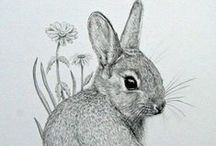 ~Sketching~