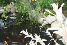 water-voda-jezírka-ponds