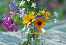 JARS AND FLOWERS / Jars And Flowers / by ~ Shnee ~