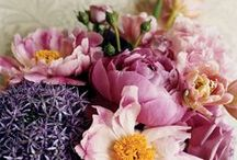 Incredible Flower Design / Flowers and Design