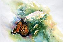 Vogels en Vlinders in aquarel / Vogels en vlinders schilderen in aquarel.