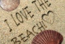 Beach / Thank you for following. Have fun pinning. / by Kelly Tran