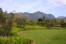 Franschhoek, Cape Winelands / The French corner of the Cape, Franshoek lies in one of the most beautiful wine valleys in the world, just 45 minutes' from Cape Town and within half an hour of the Stellenbosch, Paarl, Wellington and Somerset West wine routes. More info at http://www.sa-venues.com/attractionswc/franschhoek.php