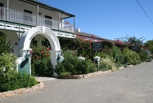 Prince Albert, Western Cape / Prince Albert is one of the prettiest towns in the country - a place of great serenity and charm, with beautiful architecture, fascinating flora and fauna and great Karoo hospitality. (See http://www.sa-venues.com/attractionswc/prince-albert.php for additional information)