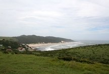 Morgans Bay, Eastern Cape / Morgan's Bay boasts one of the prettiest lagoons, which allows for protected swimming but also gives one access to incredible bird life that includes the fish eagle as well as crowned cranes. See http://www.sa-venues.com/attractionsec/morgans-bay.php