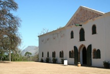 Constantia, Cape Town / Dominated by farmland and vineyards until fairly recently, Constantia lies in one of the greenest, leafiest parts of Cape Town, where 'old money' and style are the operative description for stately homesteads, long driveways and oak-lined streets. More info at http://www.sa-venues.com/attractionswc/constantia.php