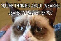Career Humor