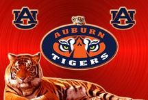 Auburn Tigers / Use this Exclusive Coupon Code: PINFIVE to Receive an Additional 5% off all Auburn Tigers Merchandise at SportsFansPlus.com