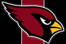 Arizona Cardinals / Use this Exclusive Coupon Code: PINFIVE to Receive an Additional 5% off all Arizona Cardinals Merchandise at SportsFansPlus.com