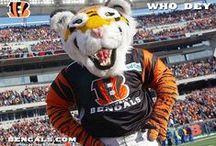 Cincinnati Bengals / Use this Exclusive Coupon Code: PINFIVE to Receive an Additional 5% off all Cincinnati Bengals Merchandise at SportsFansPlus.com