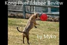 Dog Product Reviews / Bringing you Dog Product Reviews from Cross Peak Products' Dog Review Team.