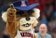 Arizona Wildcats / Use this Exclusive Coupon Code: PINFIVE to Receive an Additional 5% off all Arizona Wildcats Merchandise at SportsFansPlus.com