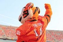 Clemson Tigers / Use this Exclusive Coupon Code: PINFIVE to Receive an Additional 5% off all Clemson Tigers Merchandise at SportsFansPlus.com