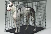 Dog Crates & Kennels / Small to Extra Large Dog Crates & Kennels. Find a dog crate to match your style and your pup's personality - choose from plastic, wire, wood, furniture style, soft-sided, and designer pet crates.   Find dog crate accessories & make the kennel cozy with dog crate mats/beds.