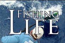 ⚓️ Fishing Life ⚓️