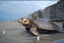"Wiki Loves Sea Turtle Monuments / To celebrate the place sea turtles hold in our societies, cultures and hearts, MEDASSET (the Mediterranean Association to Save the Sea Turtles) has created a category on Wiki Commons with the purpose of creating galleries of permanent-standing, sea turtle-related outdoor monuments along the lines of ""Wiki Loves Monuments"". Under the main category ""Sea Turtle Monuments"" several geographic sub-categories have been created. For more info, go to http://seaturtlemonuments.medasset.org"