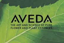 AVEDA: The Art & Science of Pure Flower & Plant Essences / AVEDA - A Lifestyle Brand