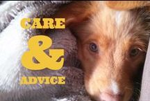 Care and advice / Good to know