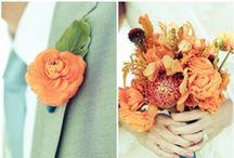 Wedding Color: Orange / Orange I Turuncu
