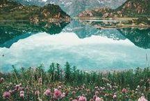 world vision / landscapes