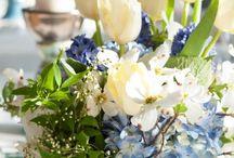 Something Blu... FB WEDDING IDEAS / Matrimoni solidali a favore Associazione Francesco Bracci