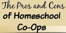 Homeschool Co-ops / Ideas, resources, inspiration, and encouragement for your homeschool co-op.