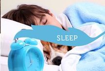 Beauty Sleep / Everything you'd ever need to know about sleep