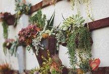 Garden Inspiration / by Woolrich Inc.