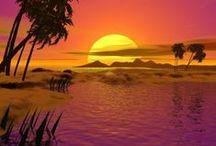 Sunrise and Sunset / nature