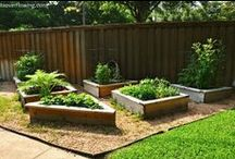 For the Garden  / awesome place to get gardening ideas and supplies